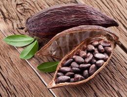 baccelli di cacao foto
