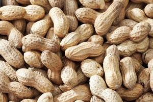 arachidi con la buccia come sfondo, da vicino
