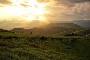 campi di riso terrazzati paesaggio sulla montagna foto