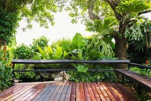 foglie verdi e alberi in giardino foto
