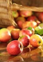 cesto di mele su un tavolo bagnato