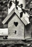 casetta per uccelli in legno foto