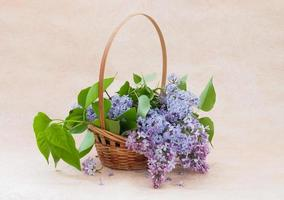 bouquet di lillà in un cesto foto