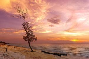 vista panoramica sulla spiaggia con il sole che tramonta foto