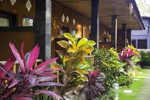 colonne di una guest house foto
