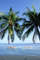filippine, provincia di surigao del norte, isola di siargao, barche locali. foto