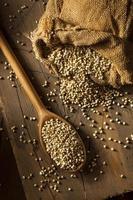 grano saraceno biologico secco crudo
