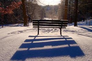 ombra della panchina foto