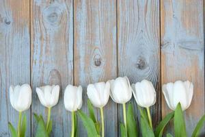 tulipani bianchi in fila con spazio vuoto su legno vecchio foto