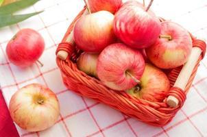 fattoria di mele