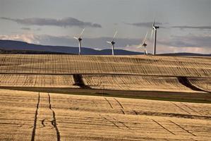 parco eolico canada foto
