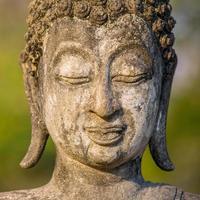 primo piano della statua della testa del buddha di pietra foto