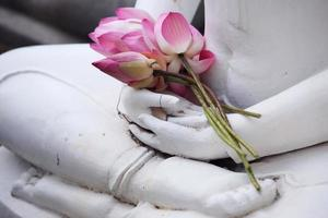 fiore di loto sull'immagine del buddha