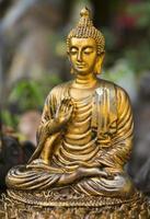 statua dorata del buddha.