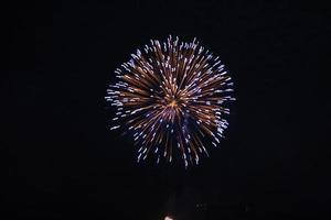 fuochi d'artificio contro il cielo scuro