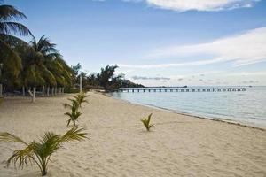 playa lancheros, isla mujeres, messico foto