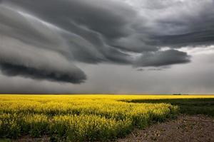 nuvole di tempesta della prateria foto