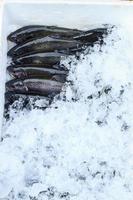 pesce trota iridea imballaggio foto