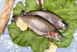 due trote appena pescate su una foglia di rabarbaro servite foto