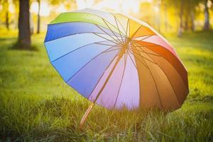 ombrello arcobaleno su sfondo verde erba