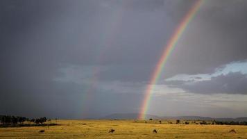 arcobaleno di maasai mara foto