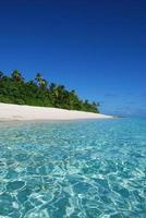 splendida spiaggia esotica di una remota isola delle Fiji