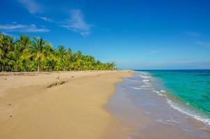 spiaggia caraibica vicino a puerto viejo - costa rica foto