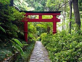 cancello torii giapponese e il sentiero di pietra nel giardino zen foto