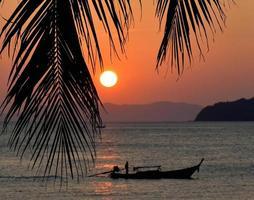 tramonto con foglie di palma. foto