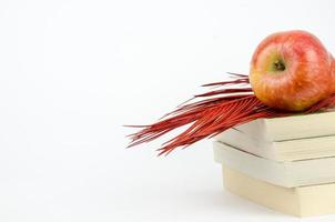 mela in piedi su un libro foto