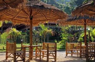 resort tropicale con mobili e ombrelloni di cardo.