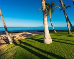 mattina su una spiaggia tropicale