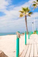 piattaforma di legno sulla strada per il mare di palme