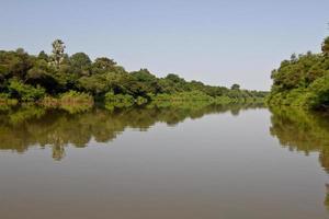 Il fiume Gambia nel Parco Nazionale di Niokolo Koba, Senegal, Africa foto