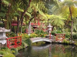incantevole parco sull'isola di madeira