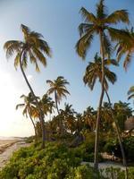 bellissima spiaggia di zanzibar, tanzania. foto