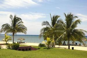 spiaggia caraibica foto