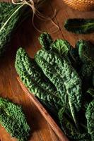 cavolo riccio verde biologico
