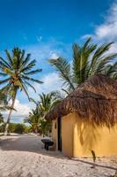 Capanne di cabanas sulla spiaggia di sabbia bianca caraibica, Tulum, Messico (Yucatan) foto