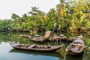 delta del mekong in vietnam