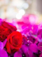 mazzo di rose rosse e fiori viola dendrobiu