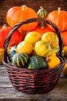 zucche colorate organiche mature nel cestino