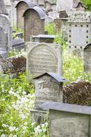 cimitero ebraico foto