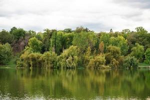 paesaggio autunnale con alberi e lago