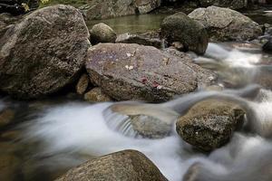 letto del torrente roccioso