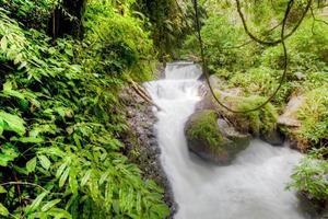 flusso di acqua di fiume nel profondo della giungla