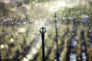silhouette di un irrigatore d'acqua