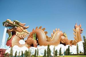 i draghi hanno abbastanza acqua nel santuario