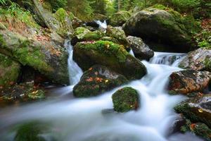 torrente di montagna nel parco nazionale di Sumava