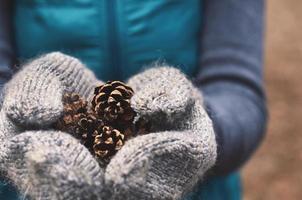 donna che tiene coni di albero di pino in guanti di lana, primi piani